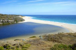 オーストラリア・西オーストラリア州にある海面の澄んだギルダートンビーチとムーア川の交わる所の光景の写真素材 [FYI04295166]