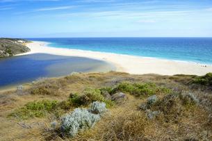 オーストラリア・西オーストラリア州にある海面の澄んだギルダートンビーチとムーア川の交わる所の光景の写真素材 [FYI04295168]