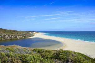 オーストラリア・西オーストラリア州にある海面の澄んだギルダートンビーチとムーア川の交わる所の光景の写真素材 [FYI04295169]