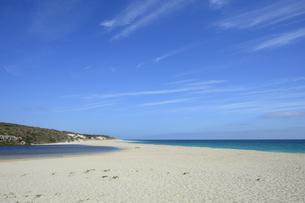 オーストラリア・西オーストラリア州にある海面の澄んだギルダートンビーチとムーア川の交わる所の光景の写真素材 [FYI04295184]