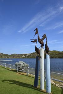 オーストラリア・西オーストラリア州にある澄んだ海面のギルダートンビーチとムーア川の交わる所の傍にあるペリカンのオブジェの写真素材 [FYI04295207]