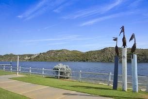 オーストラリア・西オーストラリア州にある澄んだギルダートンビーチとムーア川の交わる所の傍にあるペリカンのオブジェの写真素材 [FYI04295208]