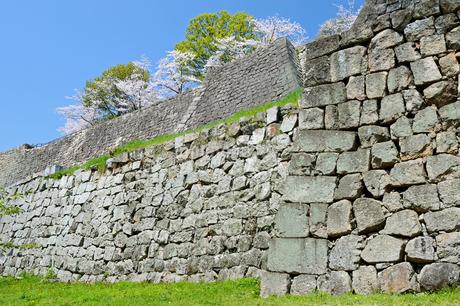 丸亀城の石垣の写真素材 [FYI04295499]