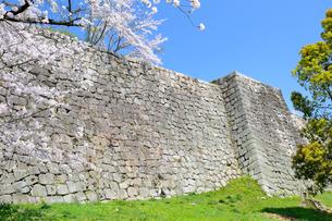丸亀城の石垣の写真素材 [FYI04295501]