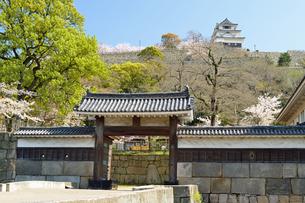 丸亀城大手二の門と天守閣の写真素材 [FYI04295516]