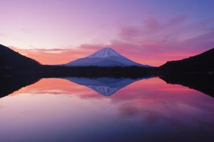 精進湖と富士山と朝焼けの水鏡の写真素材 [FYI04295546]