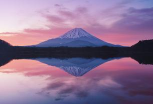 精進湖と富士山と朝焼けの水鏡の写真素材 [FYI04295548]