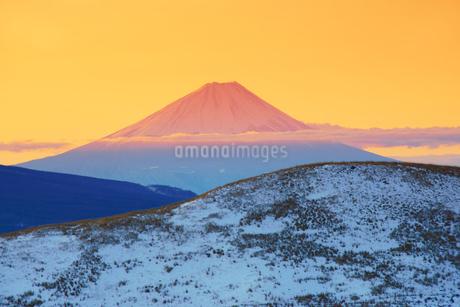 朝日に染まる富士山の写真素材 [FYI04295571]