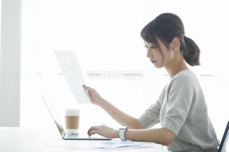 仕事をする女性の写真素材 [FYI04296335]