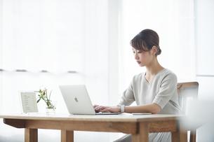 仕事をする女性の写真素材 [FYI04296415]