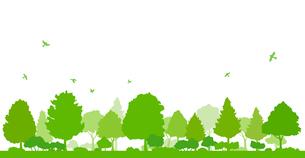 木々と飛ぶ鳥の風景のイラスト素材 [FYI04296669]
