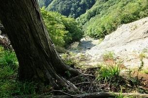 山の崩落地の写真素材 [FYI04296740]