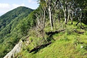 檜岳に檜岳山稜の写真素材 [FYI04296741]