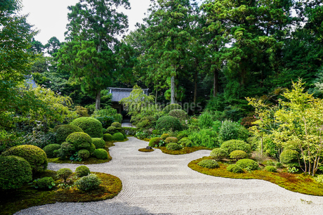 美しい寺社の枯山水の庭と山門の写真素材 [FYI04296924]
