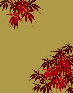 植物柄のパターンのイラスト素材 [FYI04297056]