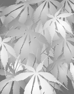 植物柄のパターンのイラスト素材 [FYI04297057]