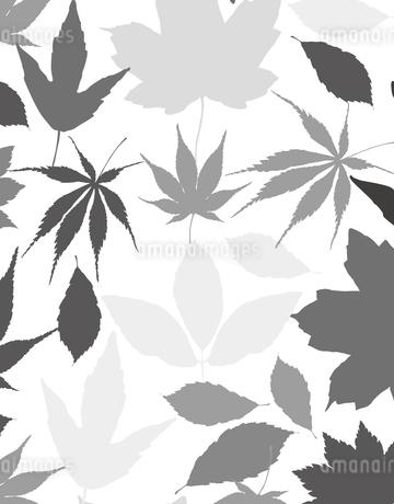 植物柄のパターンのイラスト素材 [FYI04297059]