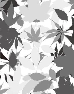 植物柄のパターンのイラスト素材 [FYI04297061]