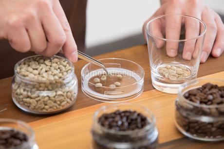 コーヒー豆の写真素材 [FYI04297133]