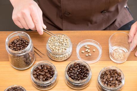 コーヒー豆の写真素材 [FYI04297134]