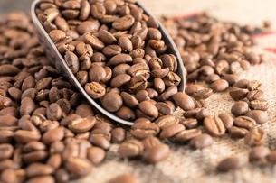 コーヒー豆の写真素材 [FYI04297144]