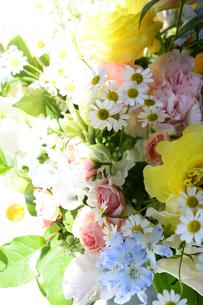 春の花のフラワーアレンジメントの写真素材 [FYI04297208]