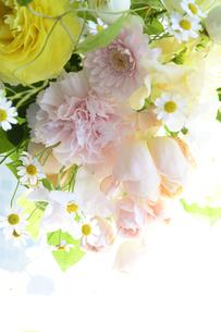 春の花のフラワーアレンジメントの写真素材 [FYI04297211]