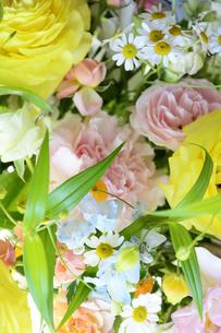 春の花のフラワーアレンジメントの写真素材 [FYI04297214]
