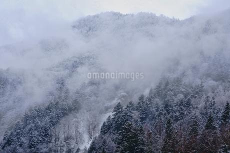 冬の山の写真素材 [FYI04297517]