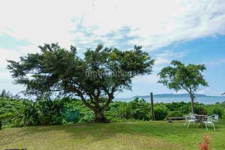 石垣島の風景の写真素材 [FYI04297521]