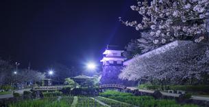 長崎県 桜 大村公園 パノラマ (玖島城跡) の写真素材 [FYI04297616]