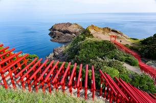 元乃隅稲荷神社の写真素材 [FYI04297871]