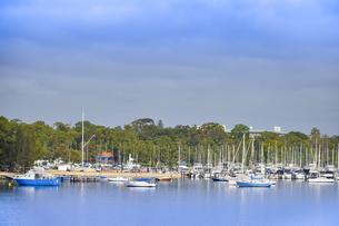 オーストラリア・西オーストラリア州のインド洋沿岸に並ぶ沢山の船と木々に囲まれた建物の光景の写真素材 [FYI04297906]