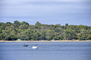 オーストラリア・西オーストラリア州のインド洋沿岸に並ぶ沢山の車両とレジャー船の光景の写真素材 [FYI04297916]
