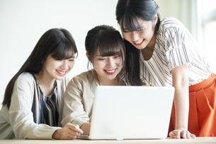 パソコンを操作する女子学生の写真素材 [FYI04298309]