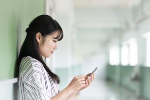 スマホを操作する女子学生の写真素材 [FYI04298314]