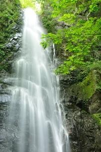 百尋ノ滝の写真素材 [FYI04298444]