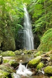 百尋ノ滝の写真素材 [FYI04298455]