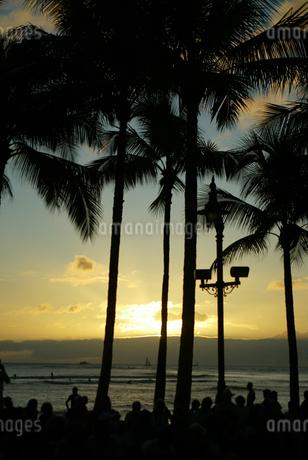 椰子の木 palm tree  sunset  ハワイ ビーチ シルエット 海辺 日没 山 空の写真素材 [FYI04298463]