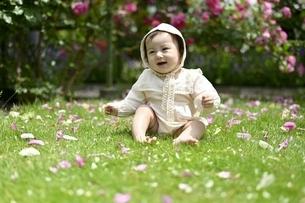 薔薇の花びらと幼児の写真素材 [FYI04298594]