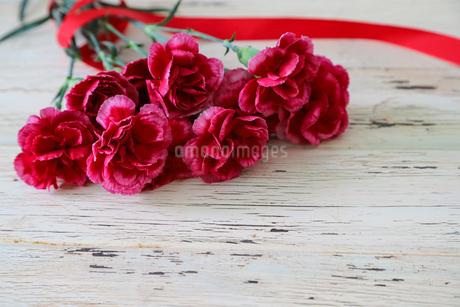 カーネーションの花束の写真素材 [FYI04298719]