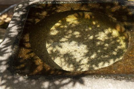 影の写真素材 [FYI04298772]