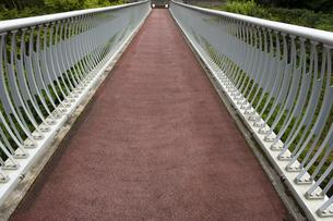 歩道橋の写真素材 [FYI04298801]