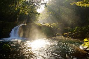 朝の菊池渓谷の写真素材 [FYI04298938]