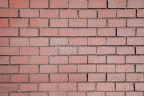 レンガ壁の背景素材の写真素材 [FYI04299059]