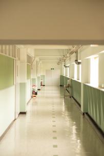 学校の廊下の写真素材 [FYI04299527]