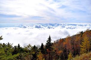 紅葉と富士山の写真素材 [FYI04299755]
