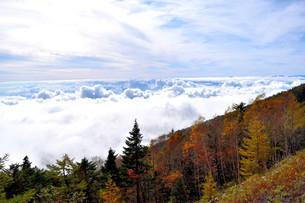 紅葉と富士山の写真素材 [FYI04299756]