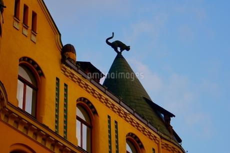 ラトビア 猫の家の写真素材 [FYI04300745]
