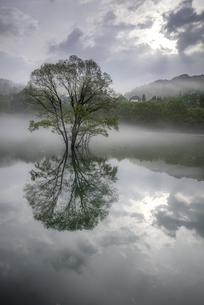 水鏡の写真素材 [FYI04300928]